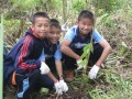 The 4G Give Green Get Green Project Image 5